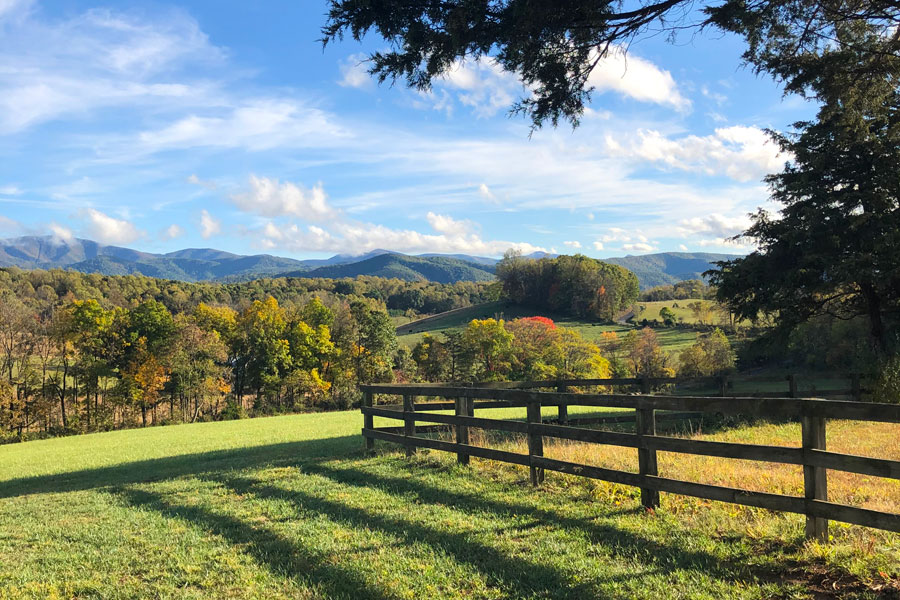 shenandoah valley virginia, the grounds of the inn at forest oaks